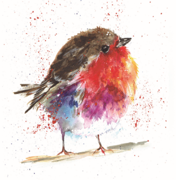 Fluffy Robin